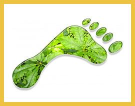 greenplanner-magazine-Sostenibilita-ambientale-e-riduzione-CO2-il-progetto-di-FAS-a-Bari